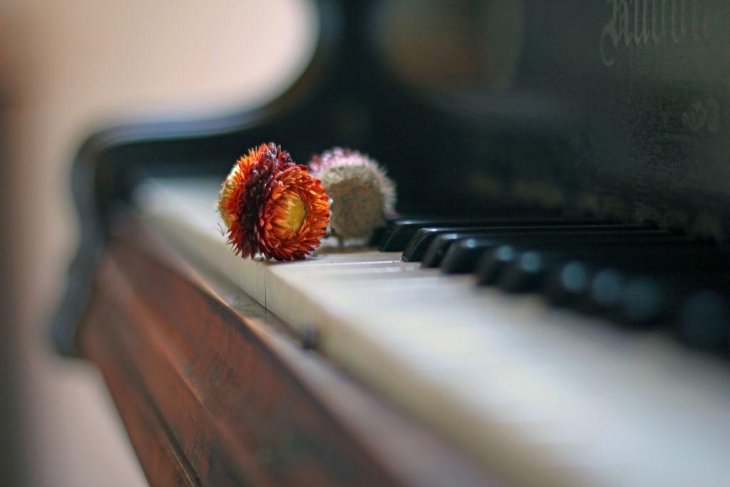 ピアノは脳の活性化に効果あり。大人から始めても遅くない!